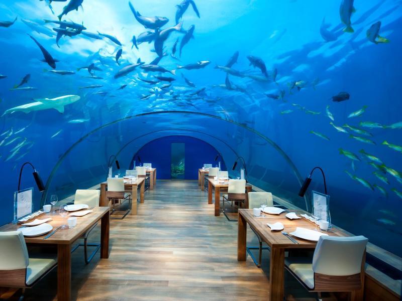 Bild zu «Ithaa»-Restaurant