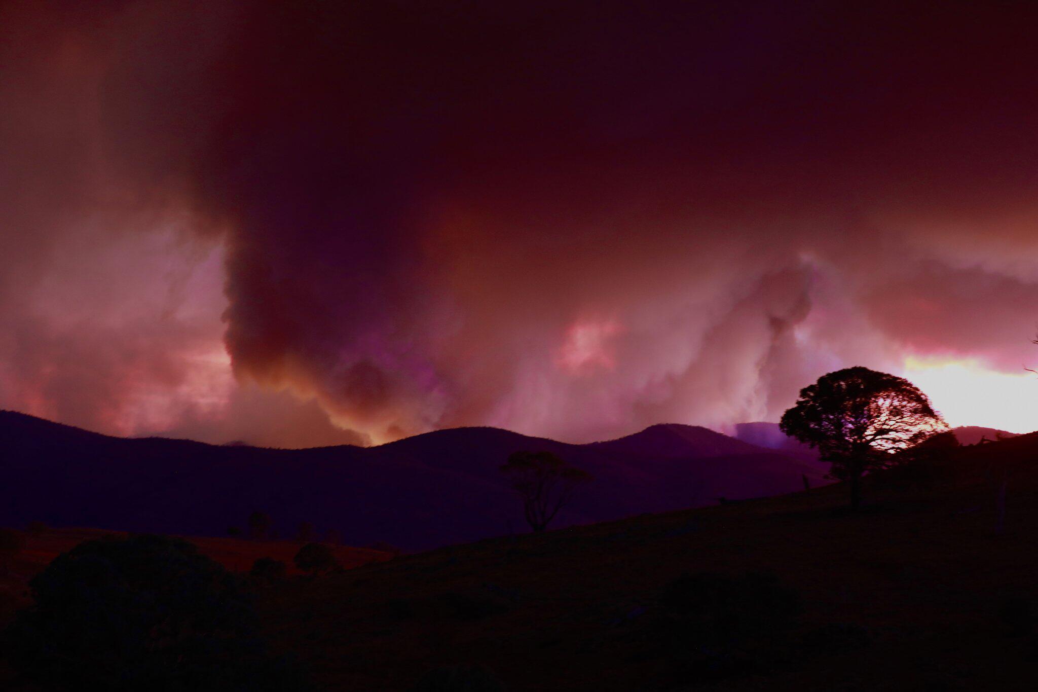 Bild zu Feuer bei Canberra - Notstand ausgerufen