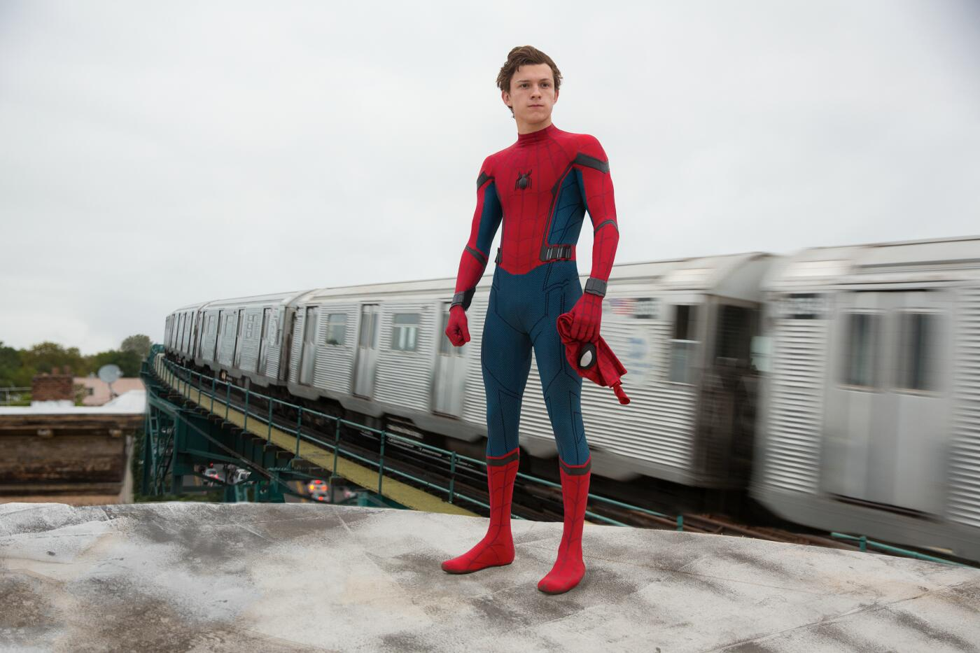 Bild zu spiderman_web