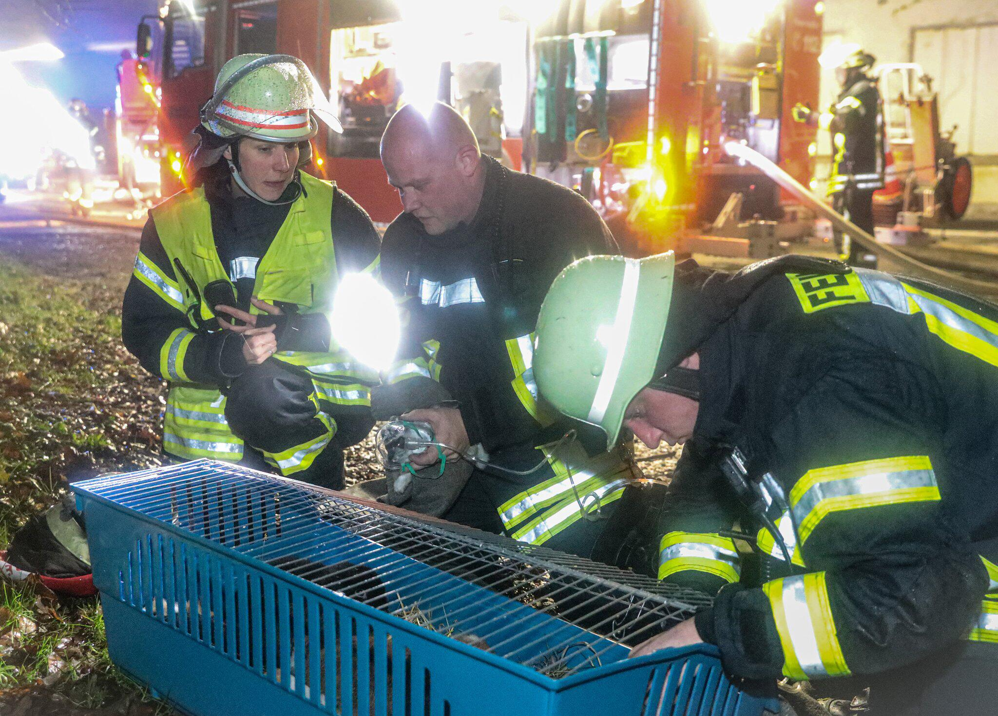 Bild zu Feuerwehr, Remscheid, Zoohandlung