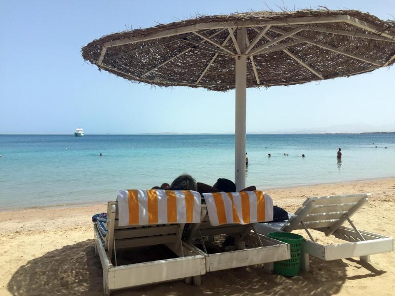 Bild zu Am Roten Meer