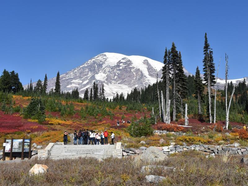 Bild zu Gelände um den Mount Rainier