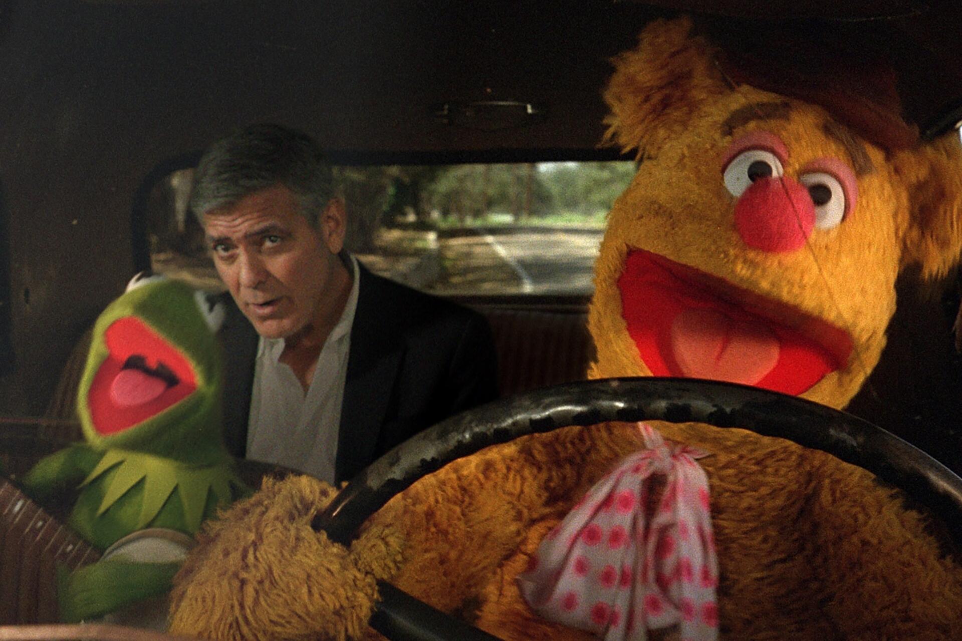 Bild zu George Clooney, Kermit der Frosch, Fozzie Bär