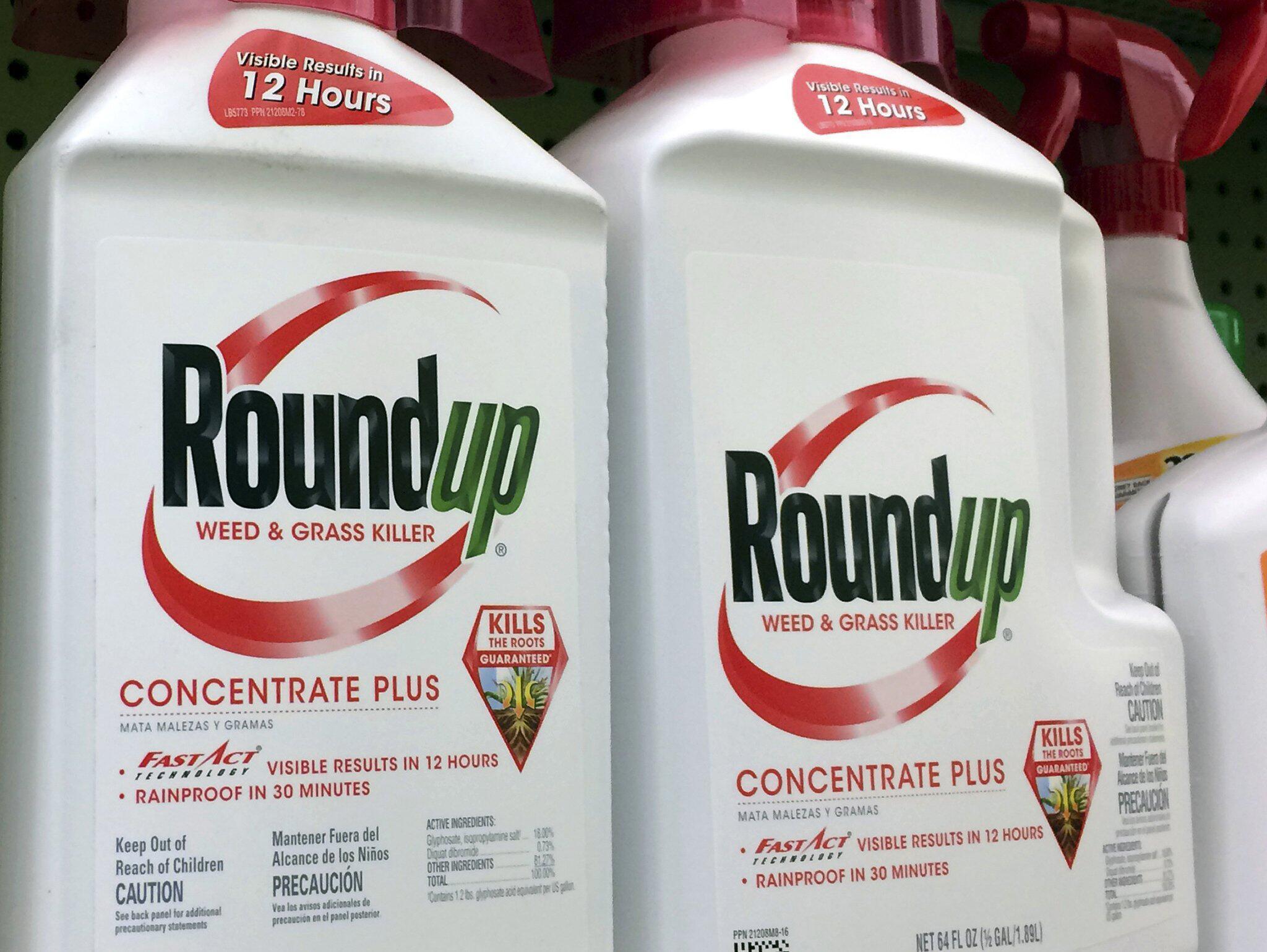 Bild zu Glyphosat-Prozess gegen Bayer-Tochter Monsanto beginnt