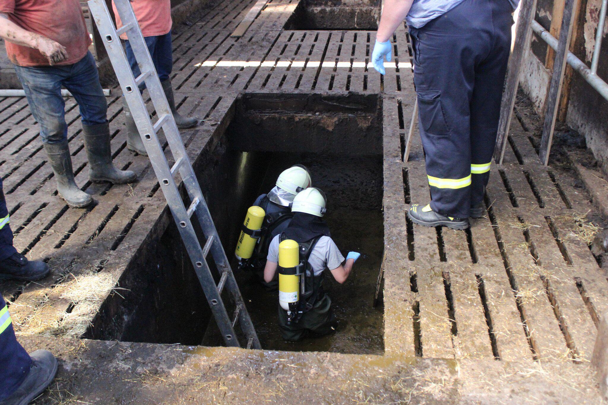 Bild zu Rettung aus der Güllegrube