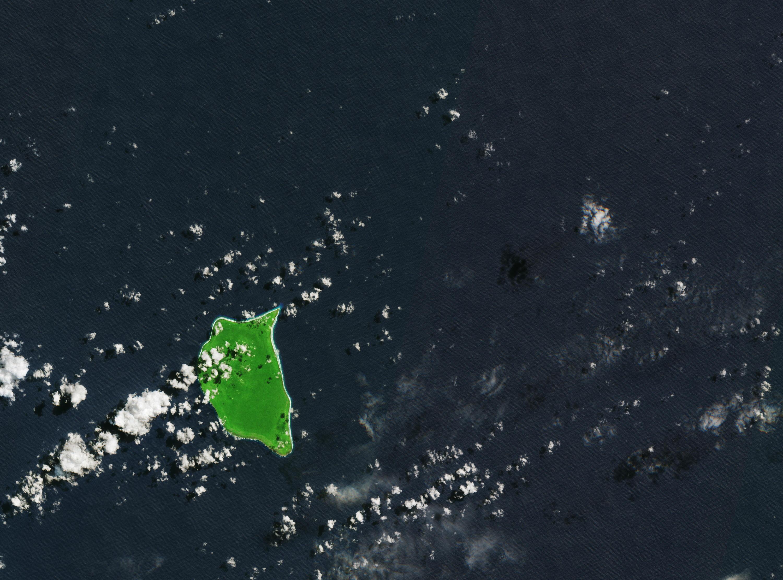 Bild zu Henderson Island