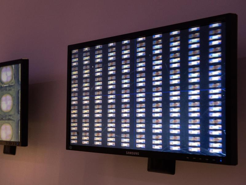 Bild zu Samsungs Riesenfernseher «The Wall»