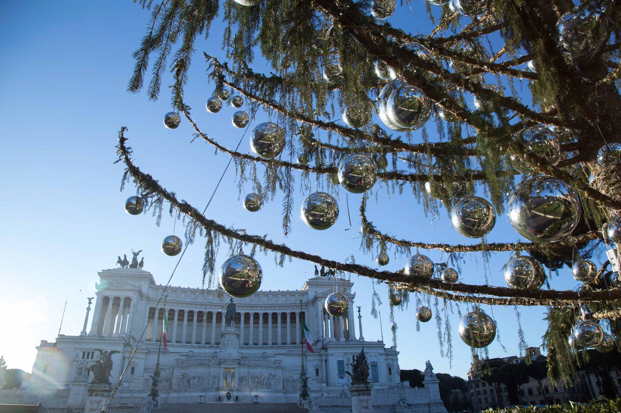Bild zu Weihnachtsbaum ''Spelacchio'' in Rom