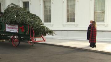 Bild zu Donald Trump, Weihnachtsbaum, Weisses Haus,