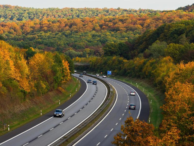 Bild zu Fahrt durch den Herbst