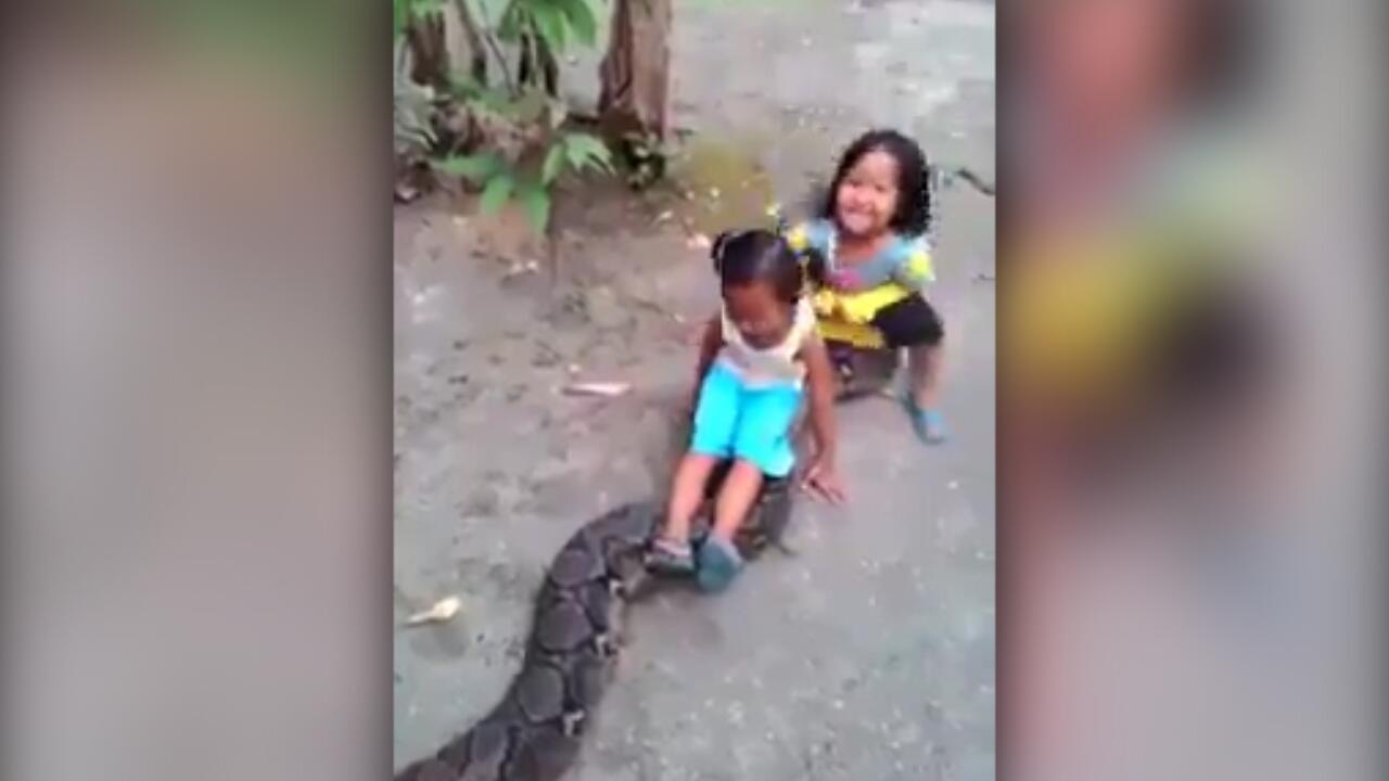 Bild zu Kleines Mädchen reitet auf Riesenschlange