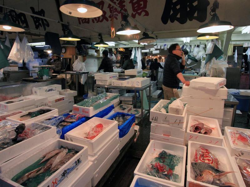 Bild zu Fische in Styropor-Kisten