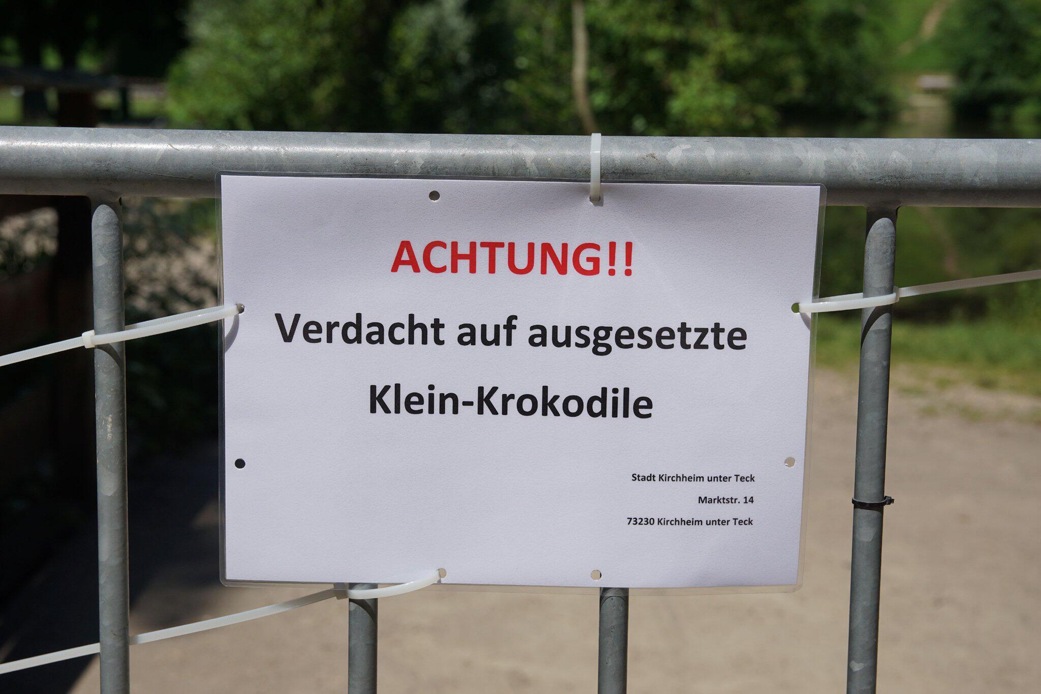 Bild zu Seen wegen ausgesetzter Klein-Krokodile abgesperrt
