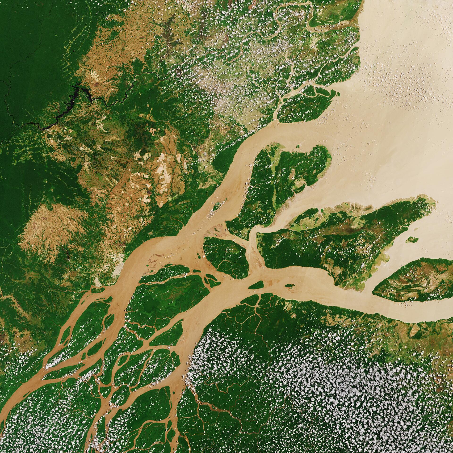Bild zu Amazonas