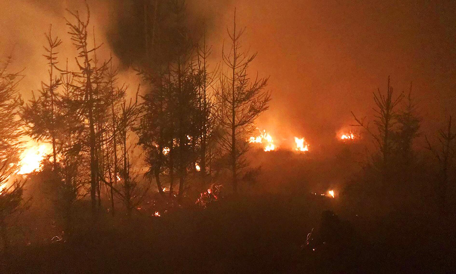 Bild zu Feuer im Seulingswald