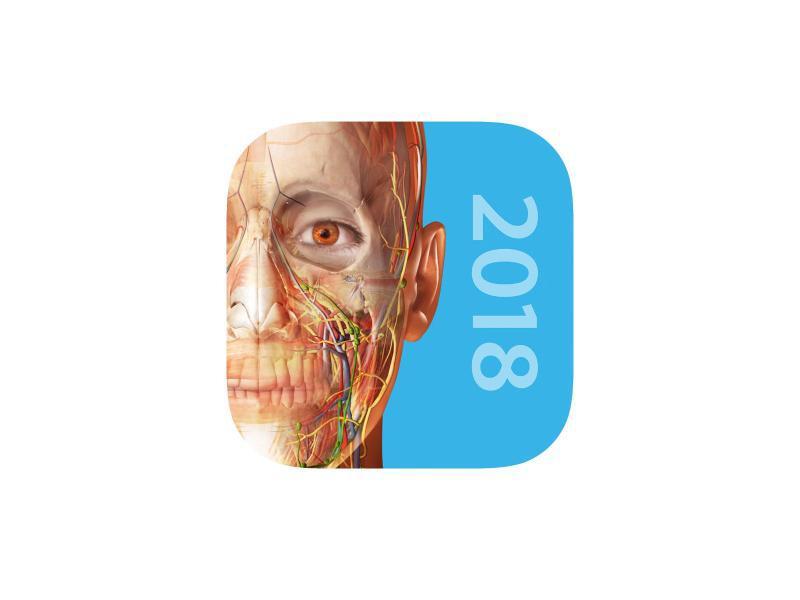 Bild zu Atlas der Humananatomie