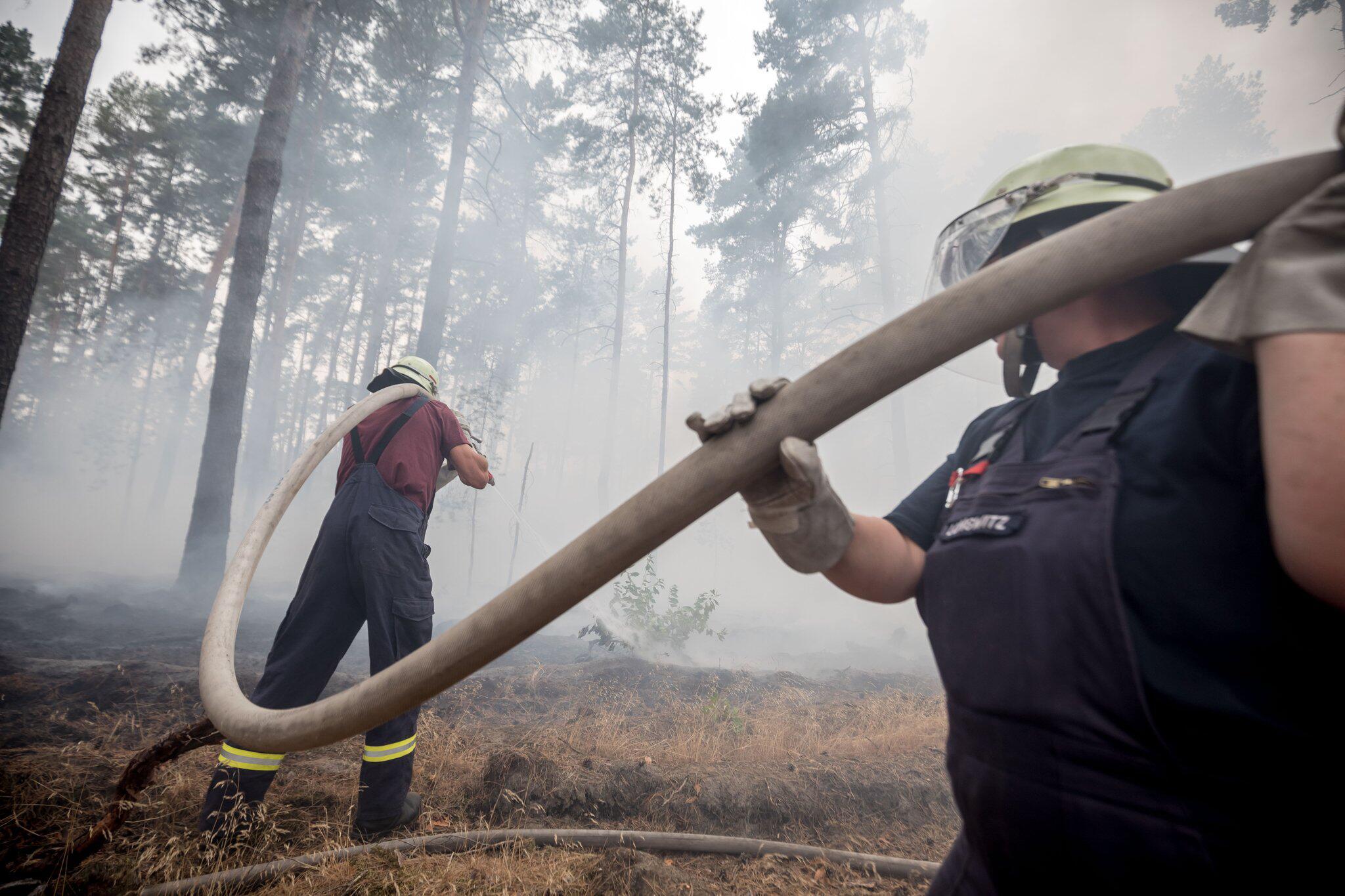 Bild zu Waldbrand in Brandenburg