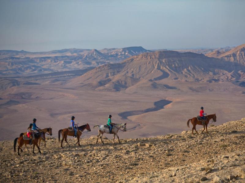 Bild zu Touristendestination Wüste Negev