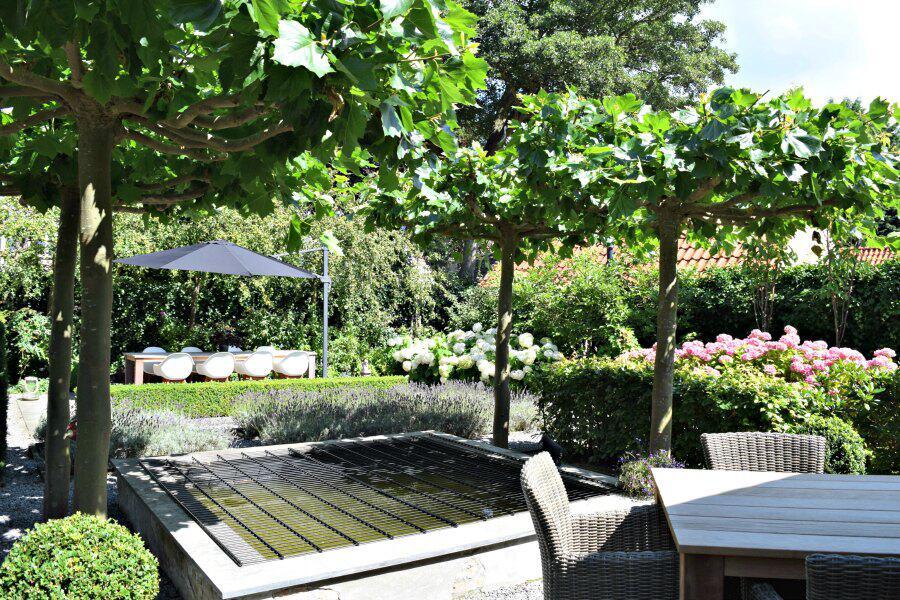 Bild zu Garten
