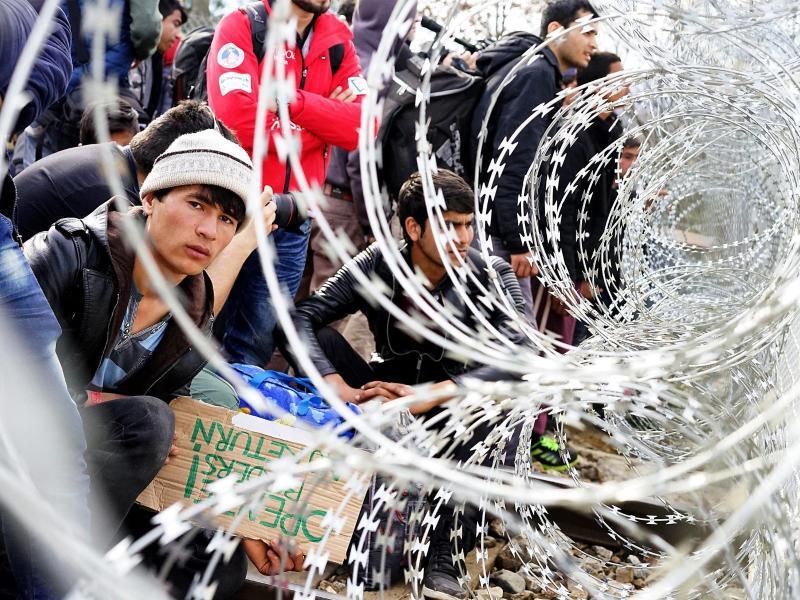 Bild zu Flüchtlinge an der mazedonisch-griechischen Grenze