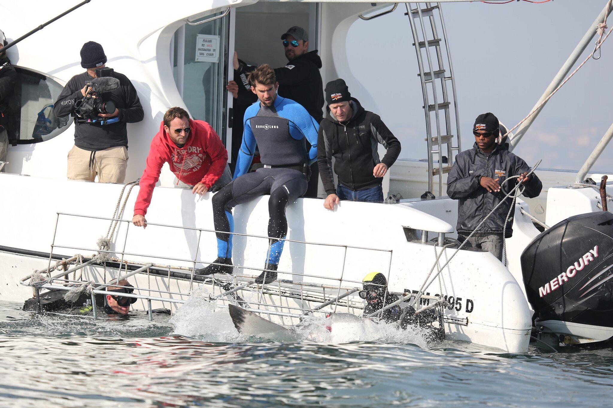 Bild zu Michael Phelps, Weisser Hai