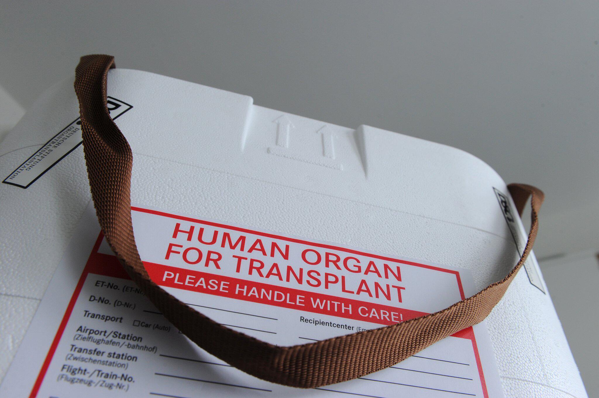 Bild zu Organspende