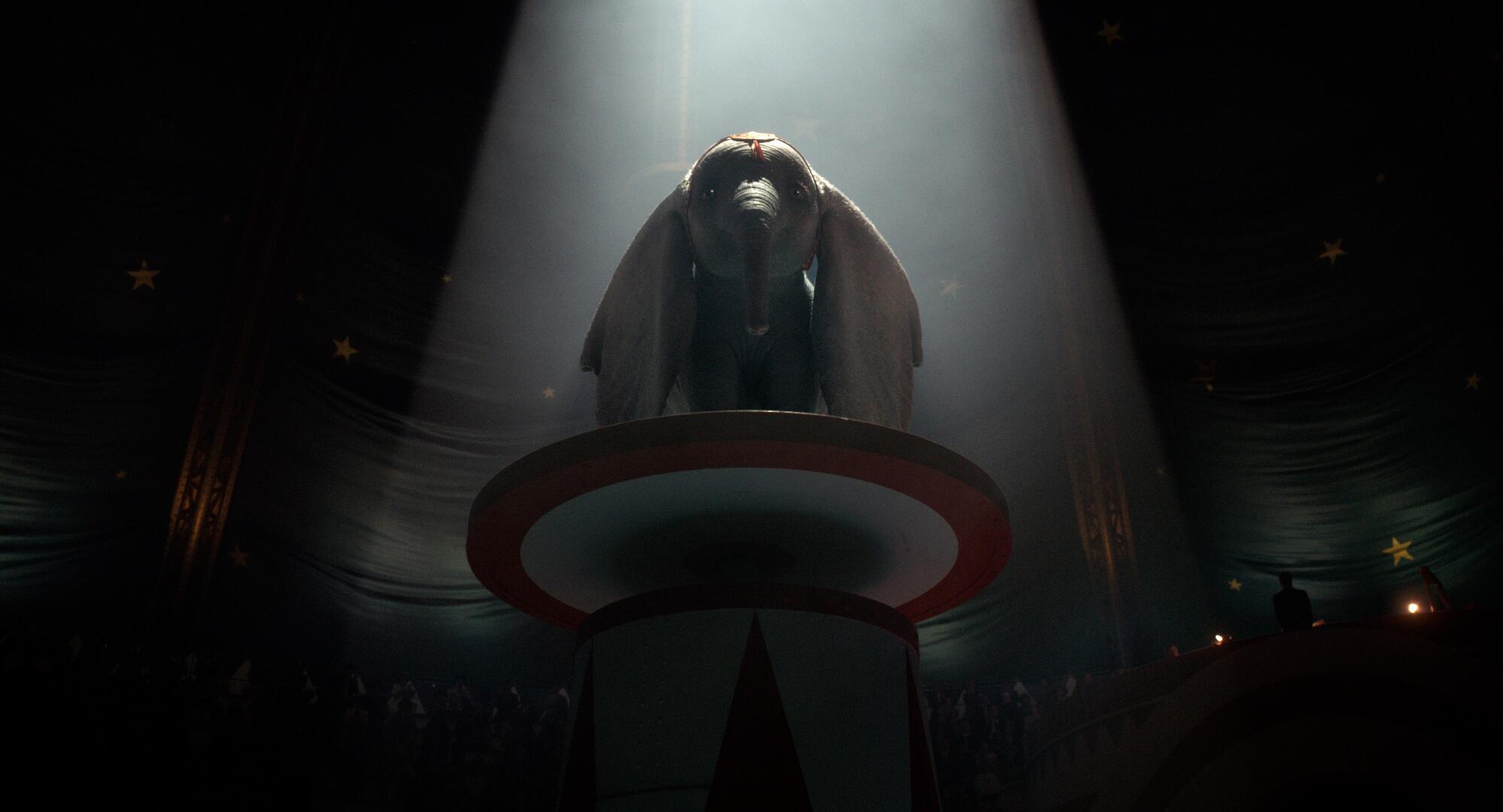 Bild zu Dumbo