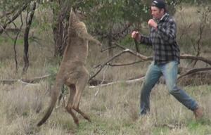 Dieser Mann rettet sein Hund