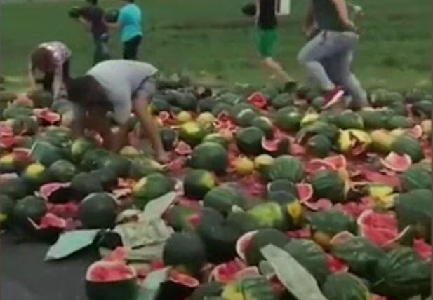 Bild zu Wassermelonen auf der Strasse