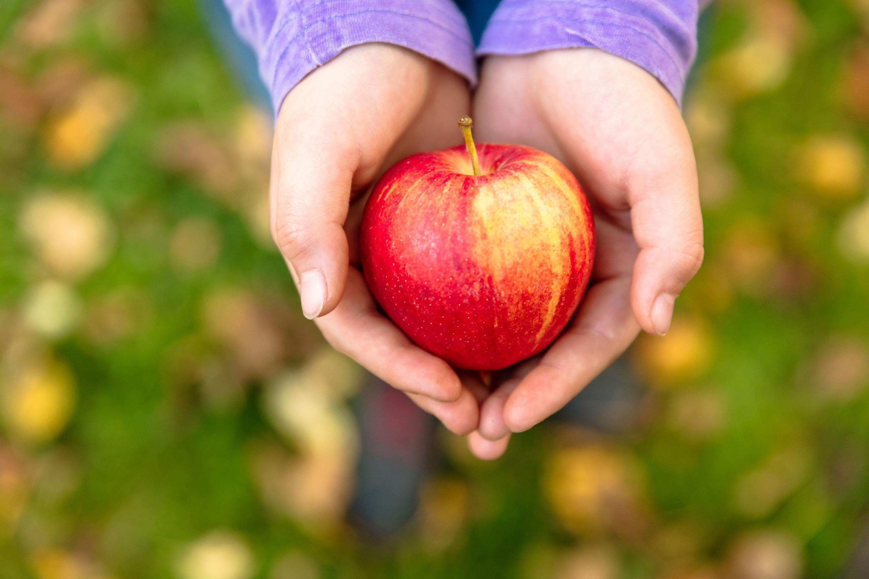 A portrait of calories, food, fruit, vegetables, nutrition, healthy