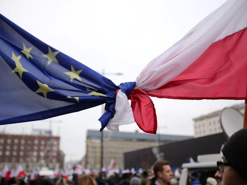 Bild zu Flaggen der EU und von Polen