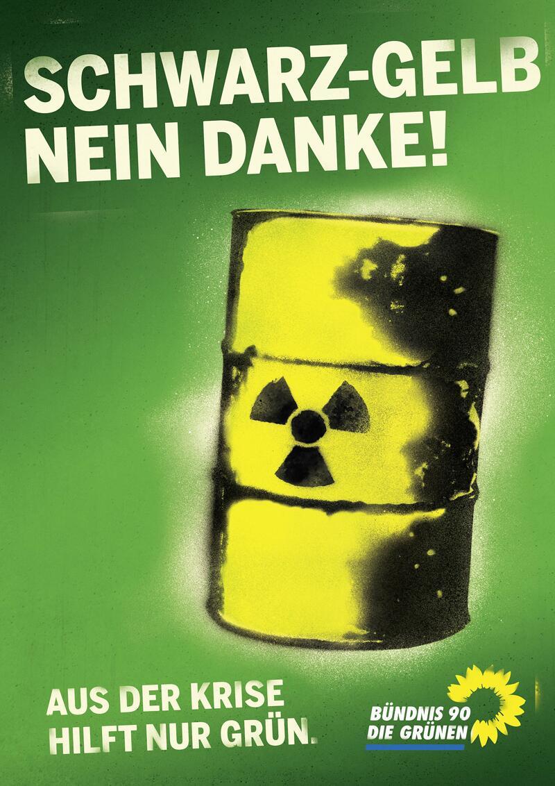 Bild zu Grünen-Wahplakat