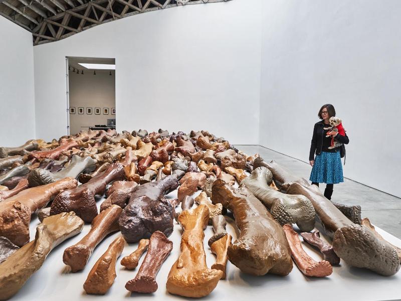 Bild zu Kunstausstellung für Hunde inNew York