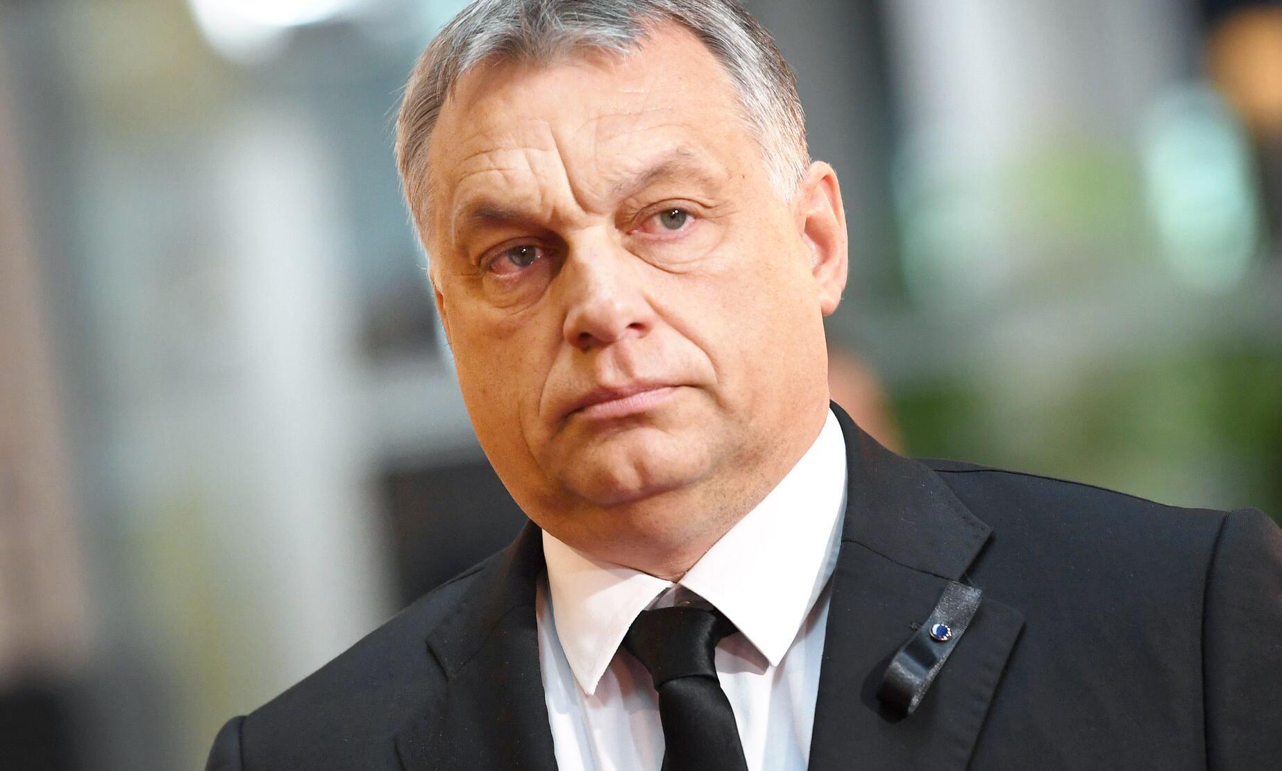 Bild zu Viktor Orban