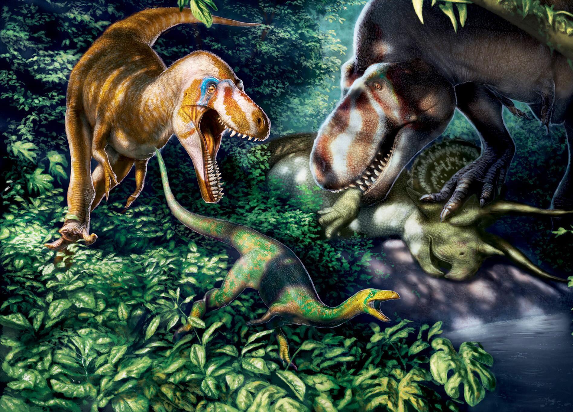 Bild zu Illustration: Junge Tyrannosaurus rex